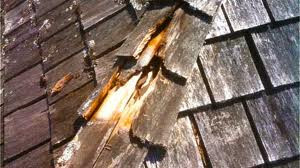 The Physical and Chemical Causes of Roof Rot