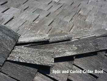 Understanding How Environmental Factors Cause Damage to Cedar Shakes and Shingles