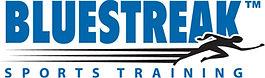 Blue Streek Sports Painting Logo