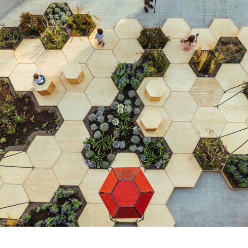 Zighizaghi Garden: Therapeutic Multisensory Biophilic Design
