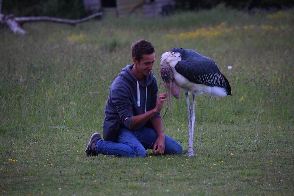 Will with Robert the Marabou Stork