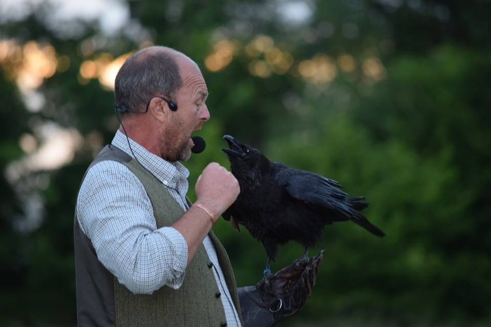 Graham and Scooby our Raven