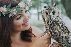 Wedding, Wedding owl, bird of prey wedding, ring bearing, owl ringbearing, bird of prey ring bearing, long eared owl, bride, bride and owl