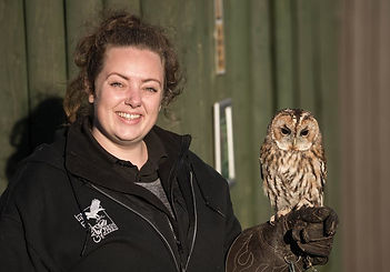 School group trip gauntlet birds of prey knutsford children owls education