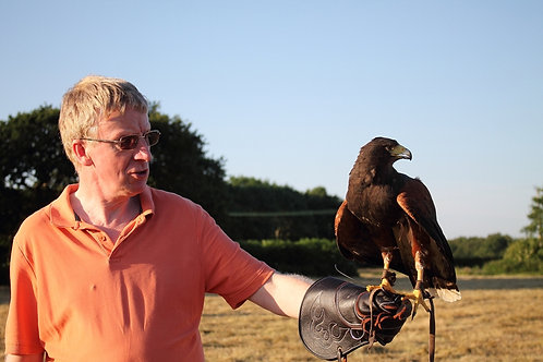 Full Day Birds of Prey Experience Plus Spectator