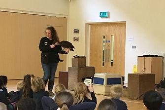 Gaunlet Birds of Prey Centre team member Sally handling a bird of prey for children at a school in Cheshire