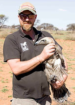 South Africa Vulture conservation white backed vulture dronfield