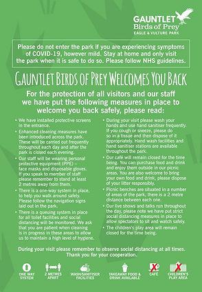 covid guidelines gauntlet.jpg
