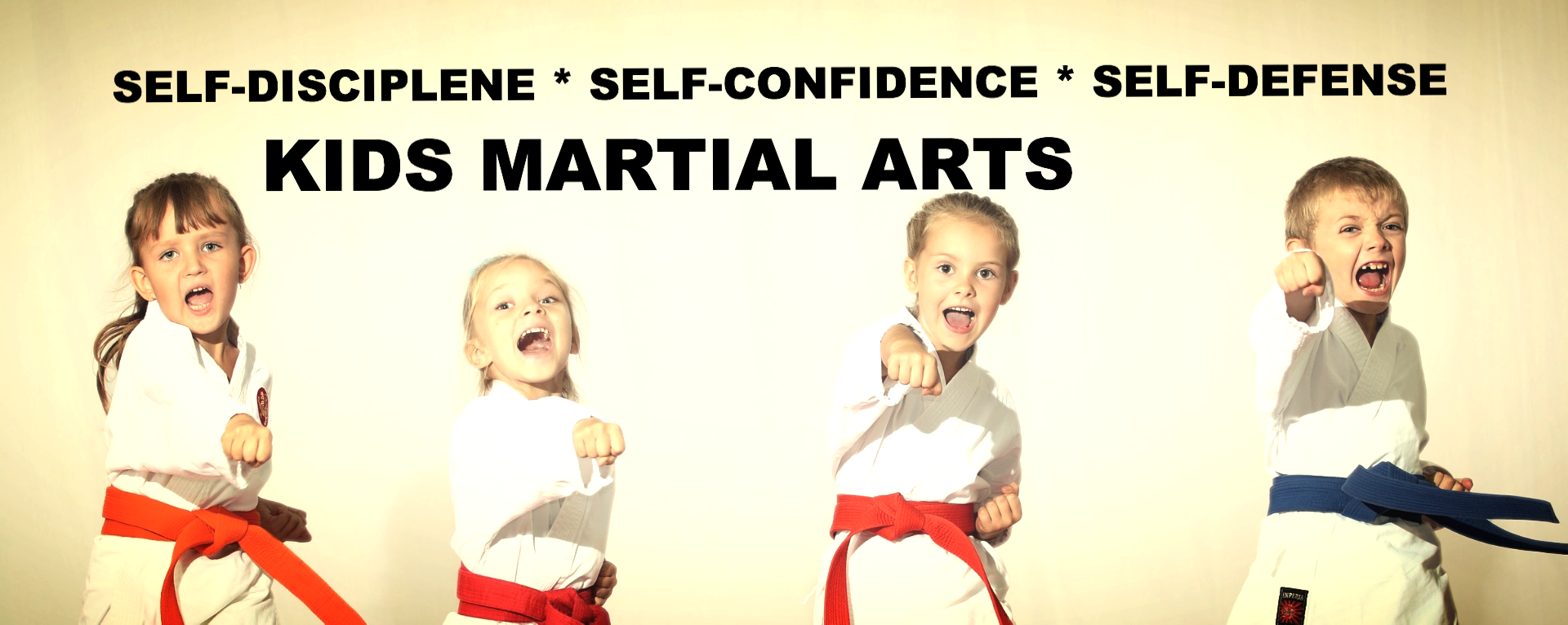 Karate Lessons Near Me | United States | TAEKWON V ACADE