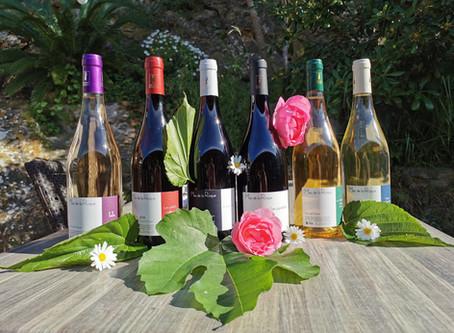 TiLLEY France en ons wijndorpje Fitou