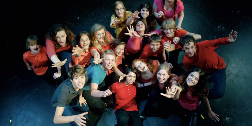 Piven Theatre Workshop