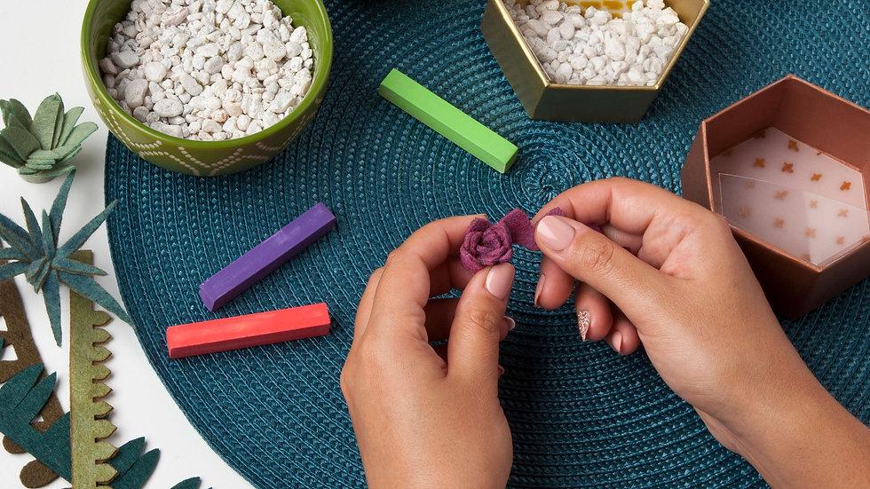 Craft Crush Mini Terrariums Kit