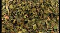 Papaya Leaf, Certified Organic, IBS and Crohn's Relief