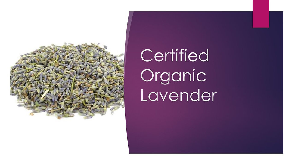 French Lavender, Certified Organic