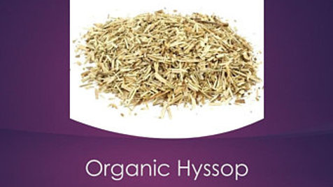 Hyssop, Certified Organic, Cold and Flu