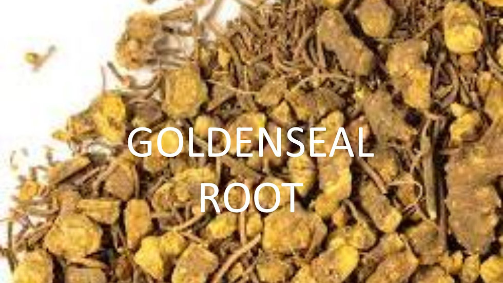 Goldenseal Root, Certified Organic, Cold and Flu, Respiratory support, Free Ship