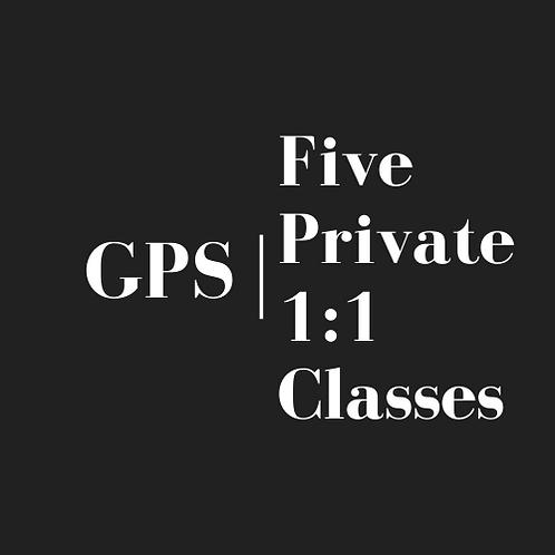 Five Private 1:1 Classes