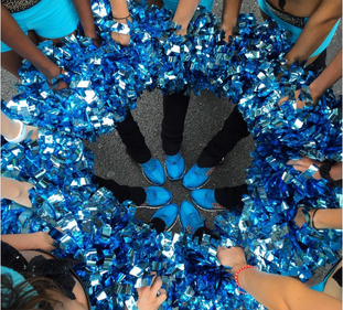 AN IDIOT'S GUIDE TO CHEER ACCESSORIES