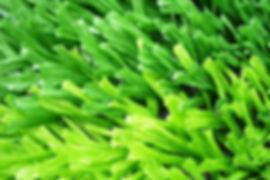 草坪用开网丝