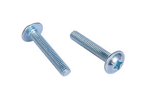 Cross Recessed Pan Head Screw with Collar