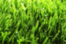生产草坪用开直丝、双色丝