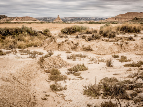 A Dry and Weary Land