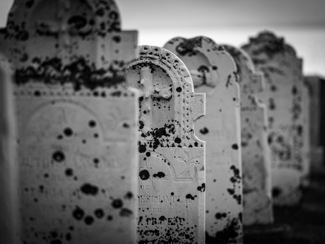 Tinsel and Tombstones: Combatting Holiday Grief with the Hope of the Gospel