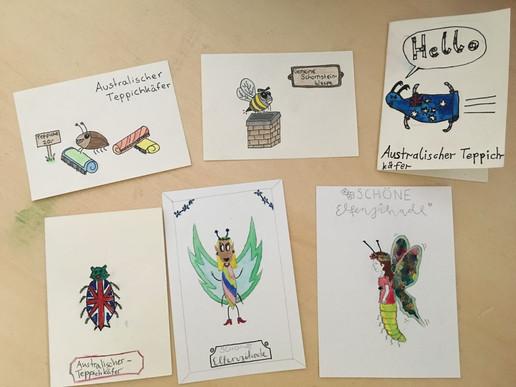 Insekten zeichnen nach Namen_edited.jpg