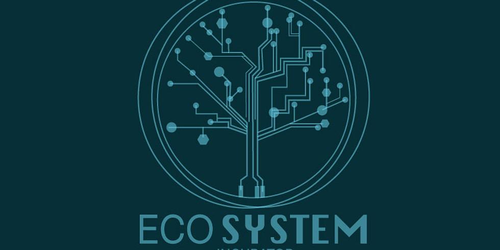 Ecosystem incubator conversation
