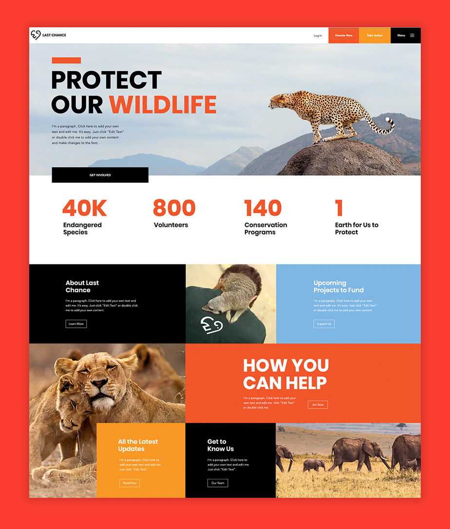 Petition website: Homepage design