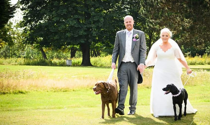 Wedding couple walking their two dogs