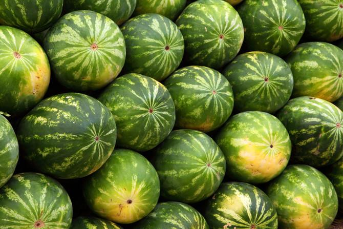 Good conditions in Mexico for watermelon season