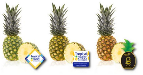 Costa Rica pineapples, worldwide delicious demand.