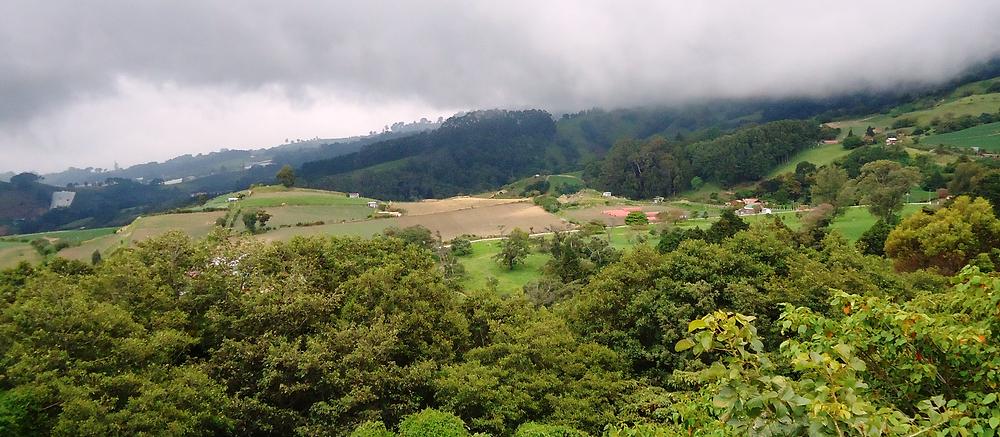 Intensive Agricultural Landscape, Costa Rica