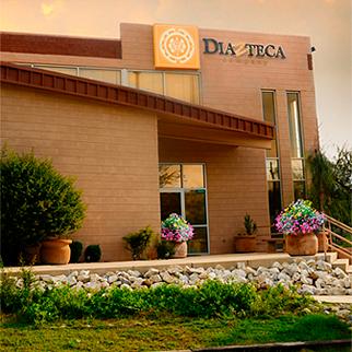 Diazteca enters organic mango business