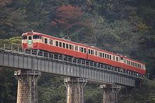 松ボウキ橋梁を行く列車