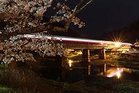 宇甘川の夜桜