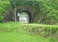 田植え後の水田と第十九陸橋