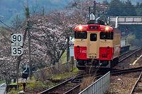 咲き始めた牧山の桜