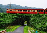 くぐりを行く列車