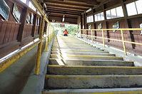 那岐駅のホームへの階段