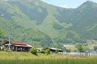 新緑の山々を背にする滝尾駅