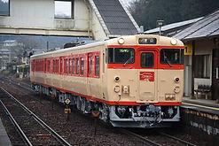 3192D 亀甲