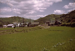 夏の神目駅