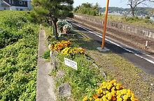 高野駅 ホーム 2016-11