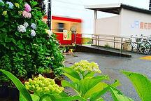 紫陽花の備前原駅