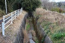 馬坂川 水路