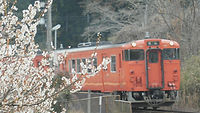 神目駅・梅とキハ