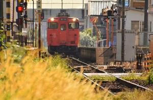 2016-10-17  秋色の津山線 (2).jpg