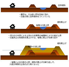 天井川の生成2021-3-1.jpg